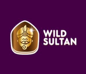 logo ws casino